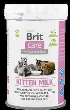 Cat Kitten Milk