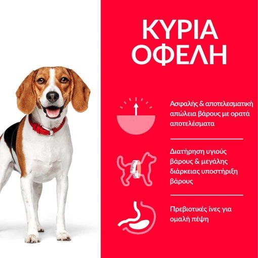 DOG_Adult_Medium_Perfect_Weight_Chicken_Transition-Benefits