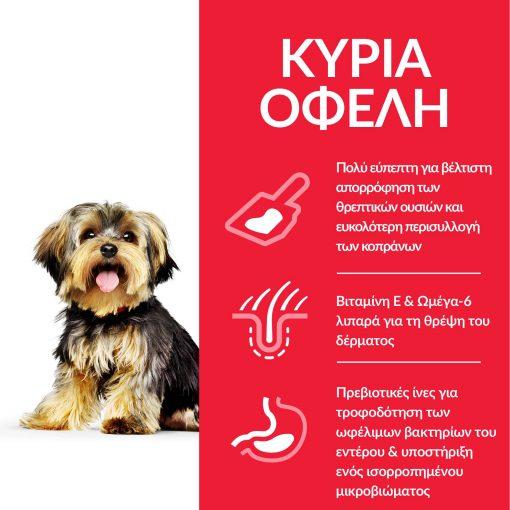 DOG_Adult_S_M_Stomach_Skin_Chicken_Transition-Benefits