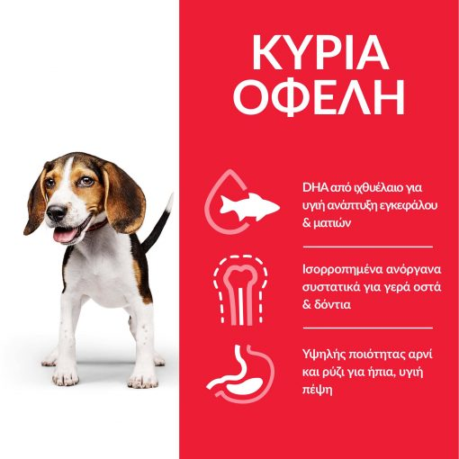 DOG_Puppy_Medium_Lamb_Transition-Benefits