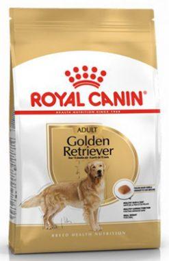 ROYAL GOLDEN RETRIEVER