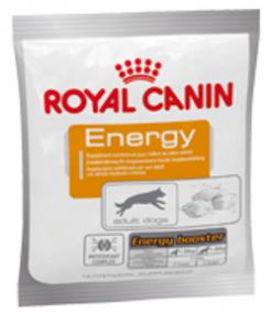 Royal canin dog energy 50gr
