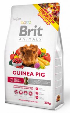 Guinea pig 300 gr